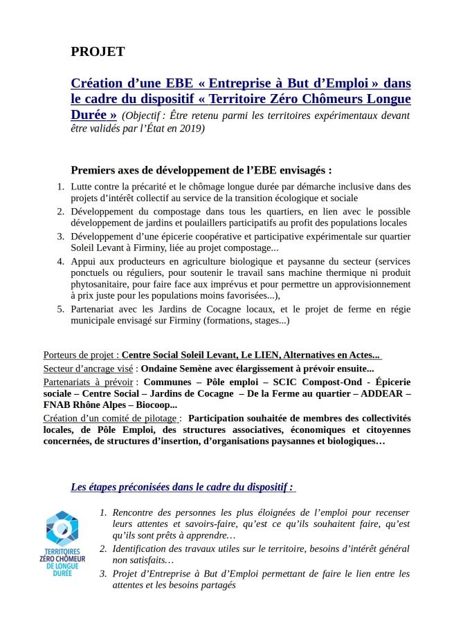 Ebauche du projet EBE Loire Sud